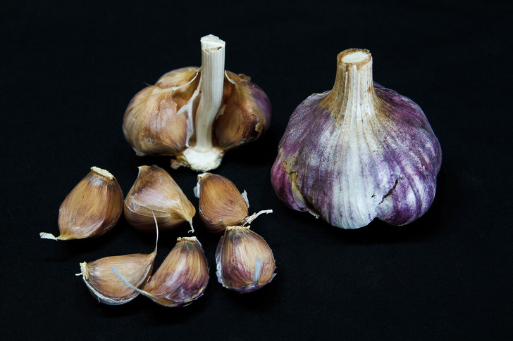 GODFATHER'S ITALIAN Garlic | Filaree Organic Seed Farm