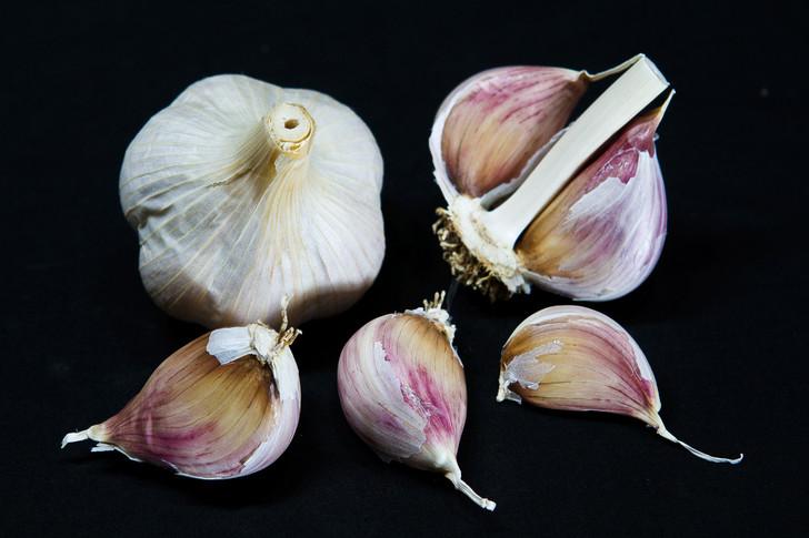 Georgian Fire Organic Garlic Seed