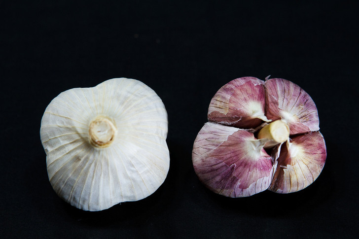 GERMAN WHITE STIFFNECK Bulk Garlic | Filaree Organic Seed Farm