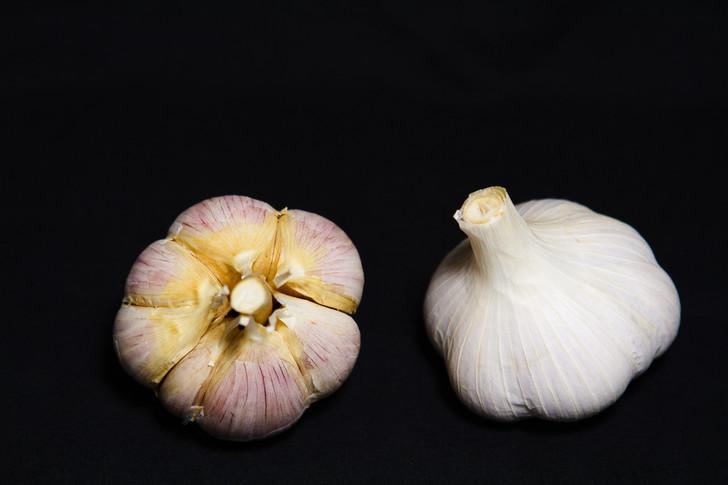 IOWA GERMAN WHITE Garlic | Filaree Organic Seed Farm