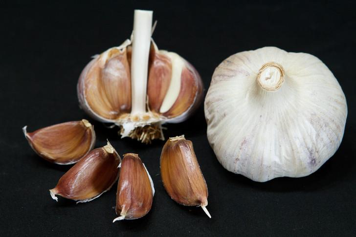 ISLAND ROCAMBOLE Garlic | Filaree Organic Seed Farm