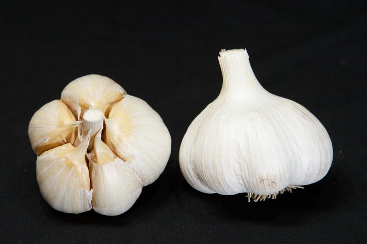 JAPANESE Garlic   Filaree Organic Seed Farm