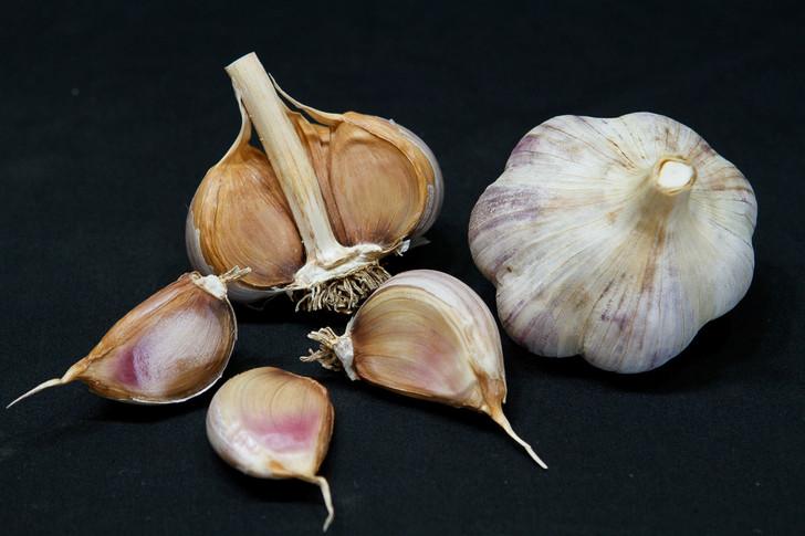 KHABAR Garlic   Filaree Organic Seed Farm