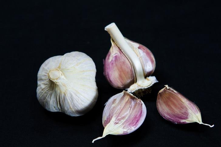 KYJEV Garlic   Filaree Organic Seed Farm