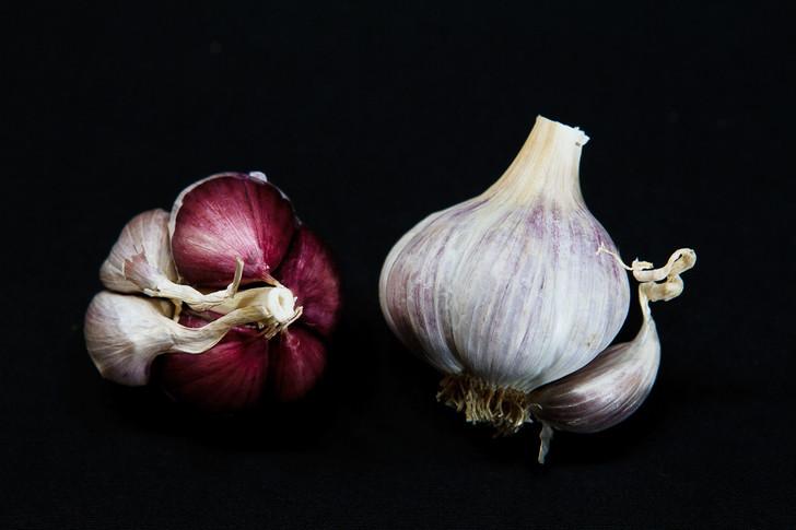 LABERA PURPLE Garlic | Filaree Organic Seed Farm