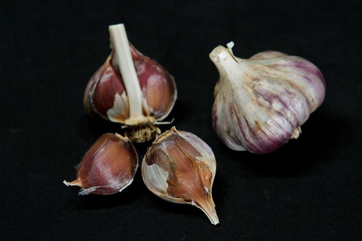 LITHUANIAN PURPLE Garlic   Filaree Organic Seed Farm