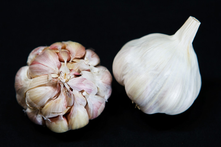 MEXICAN RED SILVER Garlic | Filaree Organic Seed Farm