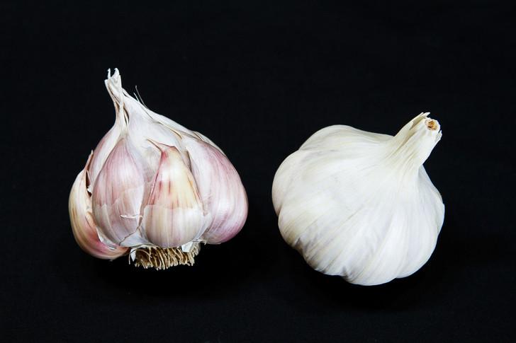 NOOTKA ROSE Garlic | Filaree Organic Seed Farm