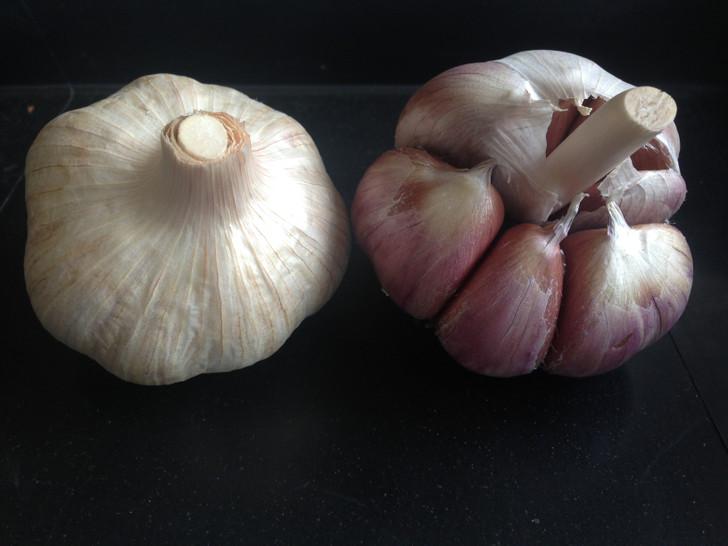 Penn Wonder Organic Garlic Seed