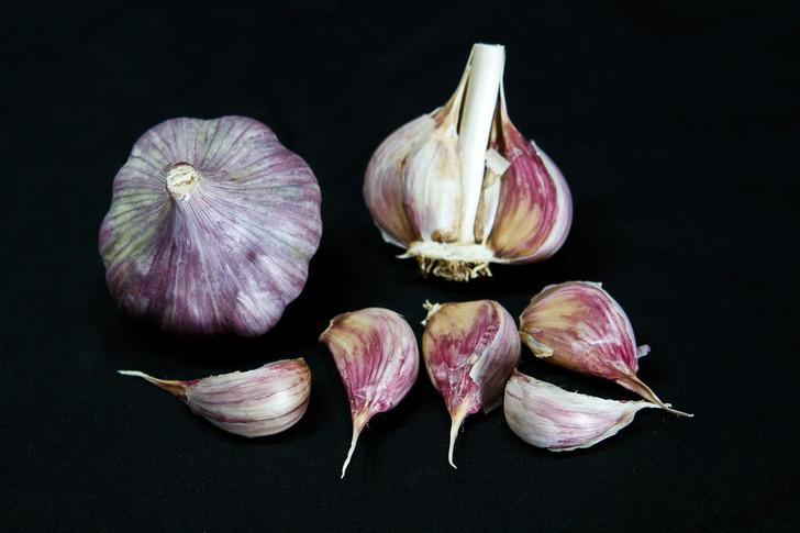 PERSIAN STAR Bulk Garlic | Filaree Organic Seed Farm