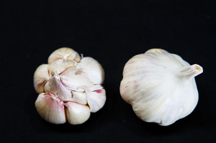 ROSE DU VAR Garlic | Filaree Organic Seed Farm