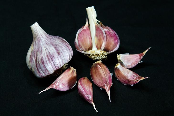 RED GRAIN Garlic | Filaree Organic Seed Farm
