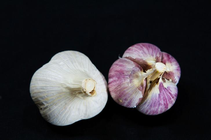 ROSEWOOD Garlic   Filaree Organic Seed Farm