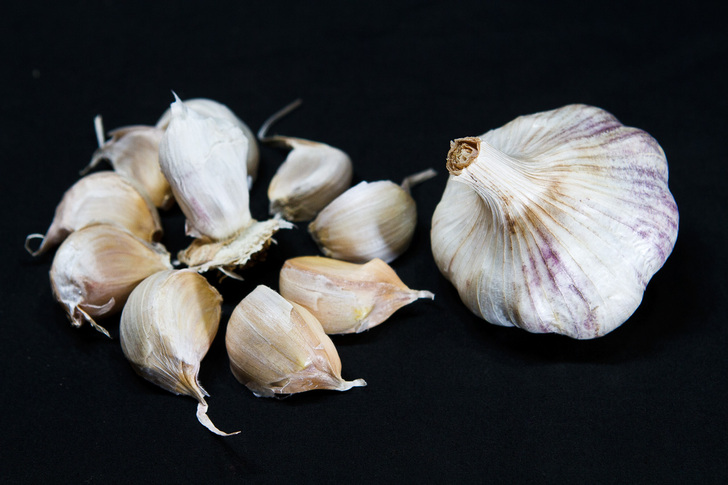 SICILIAN ARTICHOKE Bulk Garlic | Filaree Organic Seed Farm