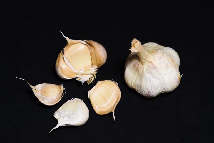 SONORAN  Bulk Garlic | Filaree Organic Seed Farm