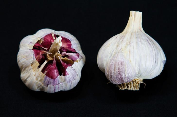 SPANISH BENITEE Garlic | Filaree Organic Seed Farm
