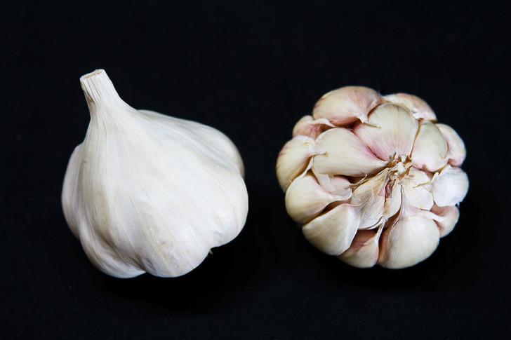 ST. HELENS Garlic | Filaree Organic Seed Farm
