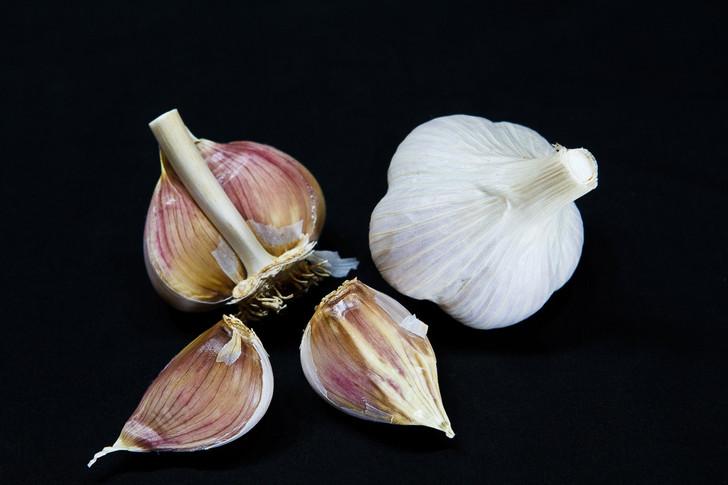 SUSAN D Garlic | Filaree Organic Seed Farm