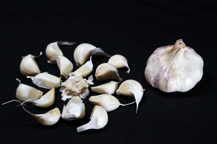 TRANSYLVANIAN Bulk Garlic | Filaree Organic Seed Farm