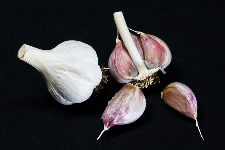 ZEMO Garlic   Filaree Organic Seed Farm
