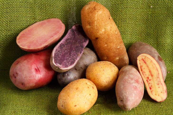 Deluxe Potato Pack | Filaree Organic Seed Farm