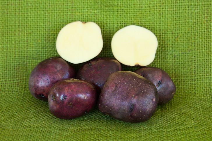 Huckleberry Gold Potato ORGANIC  SEED