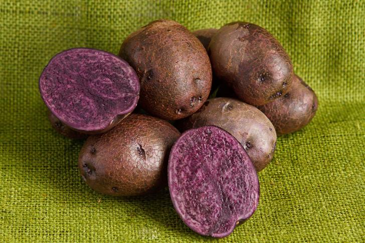 Purple Majesty Potato ORGANIC  SEED