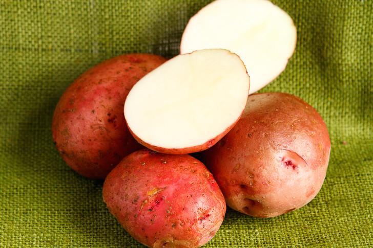 Red Pontiac Potato ORGANIC  SEED