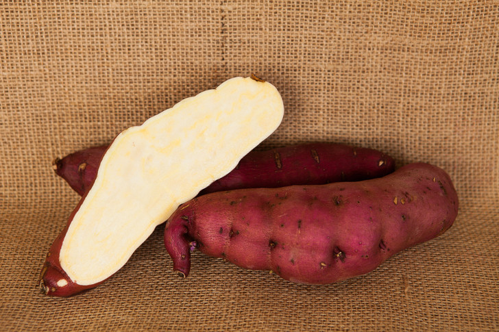 Red Japanese Sweet Potato | Filaree Organic Seed Farm