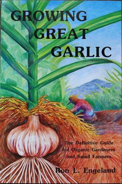 growing-great-garlic.jpeg