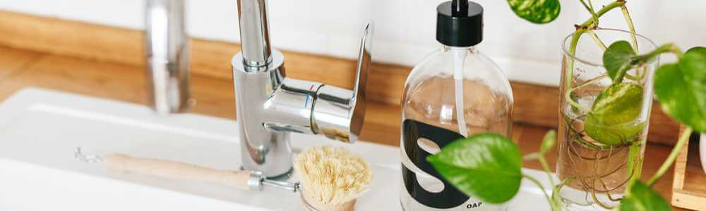soap-dispenser-dish-brush.jpg
