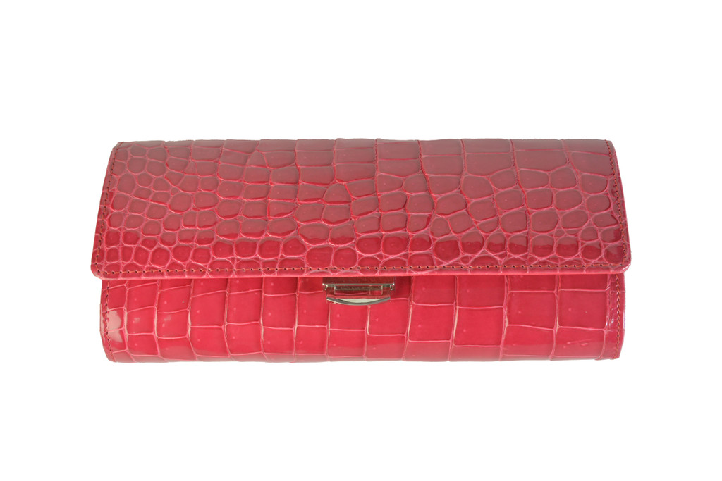 Small Clutch with Clasp
