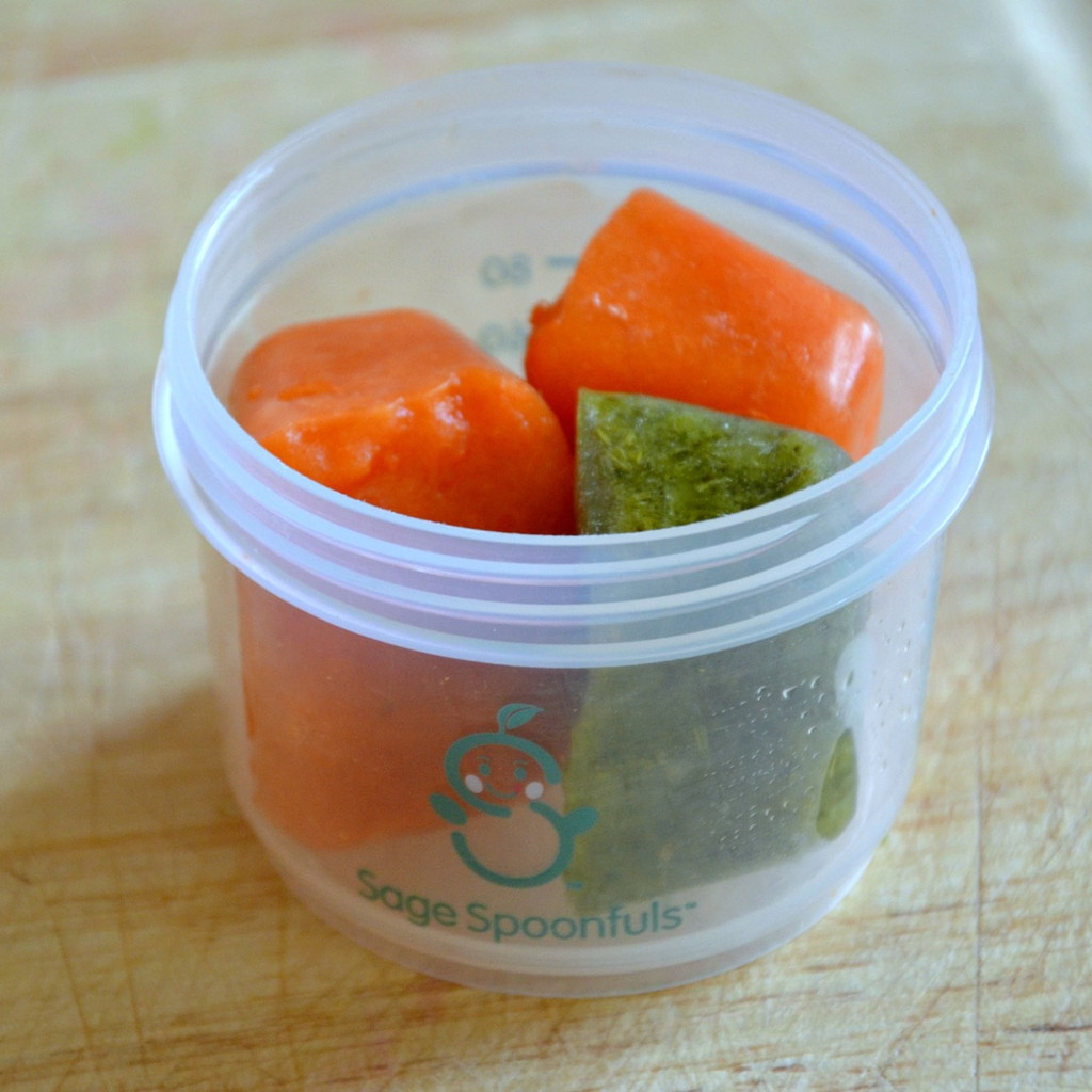 Healthy On-The-Go Bundle (BPA Free Jars)