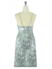 Short Handmade 8mm Cupped Sequin Dress in Classic Metallic Silver back view