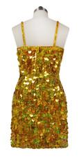 Short Handmade 20mm Paillette Hanging Sequin Dress in Hologram Gold back view
