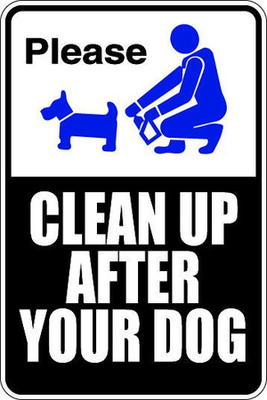 Clean Up After Your Dog Sublimated Aluminum Magnet