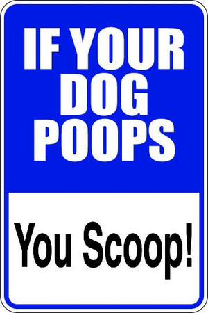 If Your Dog Poops Sublimated Aluminum Magnet