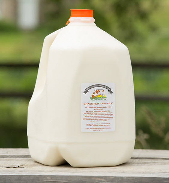 100% Grass-fed A2 Raw Cows milk 3.8% fat from Wholesome dairy farm