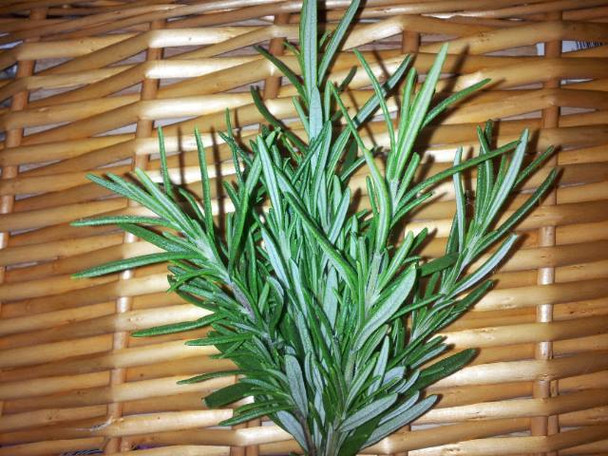 Fresh Organically grown Rosemary 1 small pack