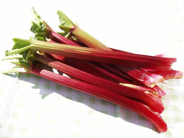 Rhubarb organically grown  1lb
