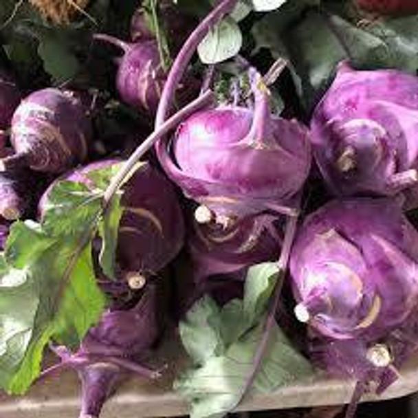 Organic Purple Kohlrabi from Jersey Hollow farm  1 Pc