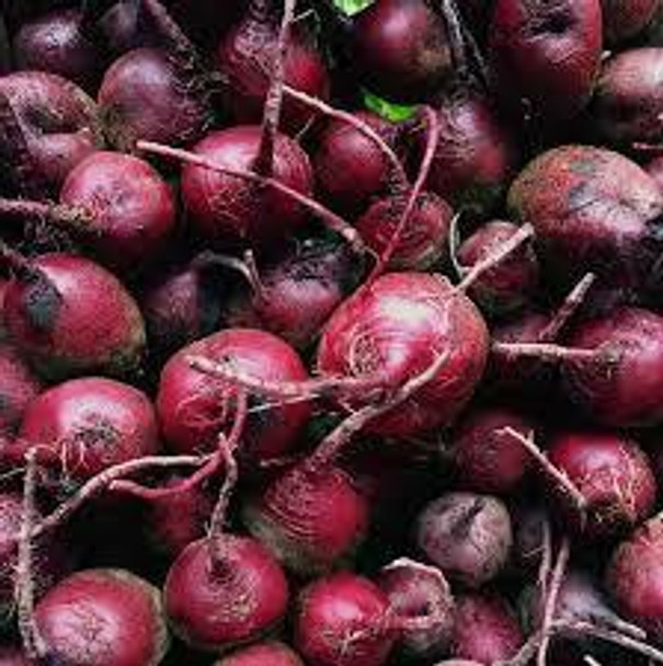 Organic Red Beets from Burkholder's Farm  2 pounds