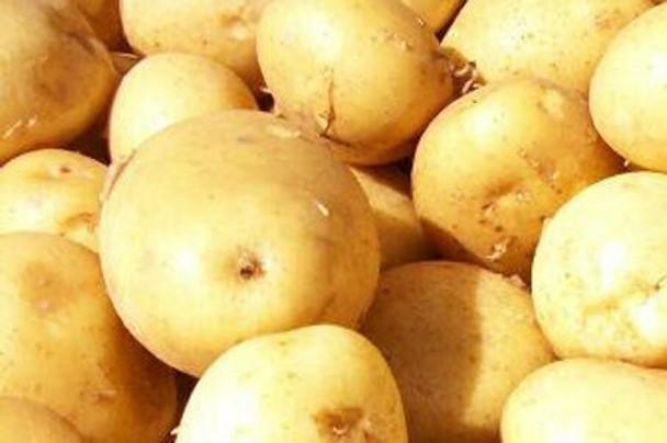 Organic Potatoes Yellow Flesh (2lbs)