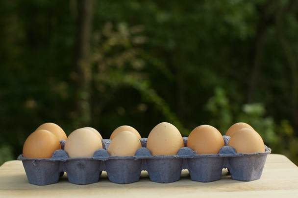 100% Free Range/Roaming Chicken Eggs from Souder's Amish Farm. 1 Dozen