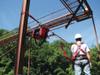 Protecta 1200101 PRO-Line 60' Web Horizontal Lifeline System