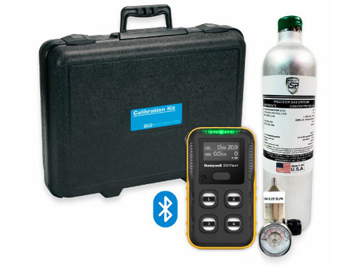BW Flex (LEL, O2, H2S & CO) 4-gas Cylinder - Regulator and Carrying Case
