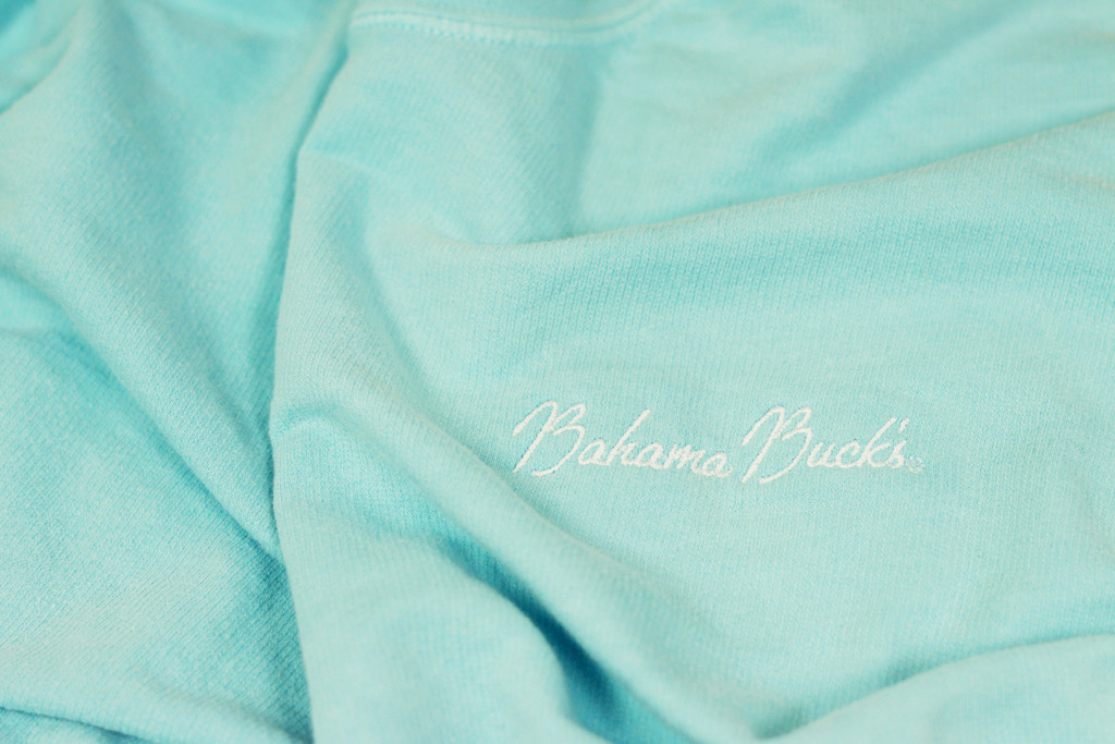 Detail of  Chalky Mint Pullover