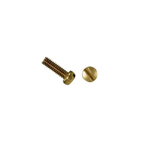 Slotted Fillister Machine Screw Stock Photo