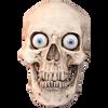 Standard Talking Skull