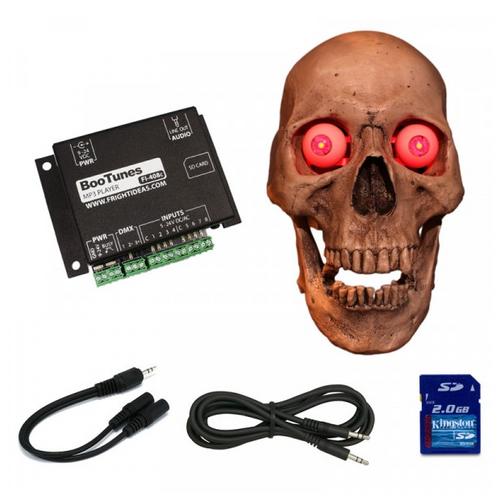 Talking Skull Kit